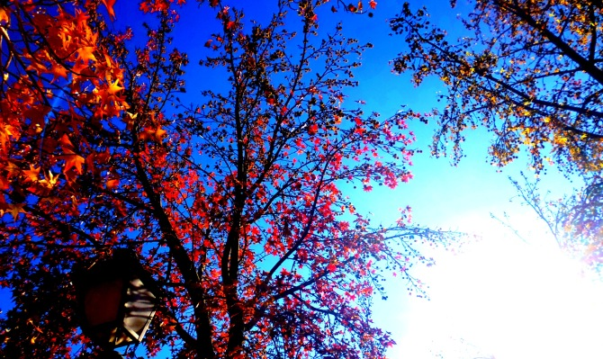 Aranjuez sky